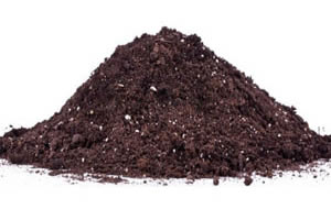 Super Best Quality PAS 100 Organic Compostsold in Bristol